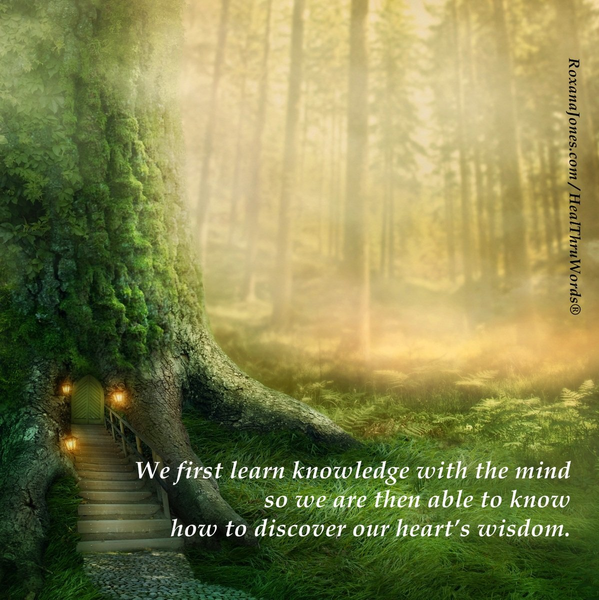 Inspirational Image: Knowing Wisdom
