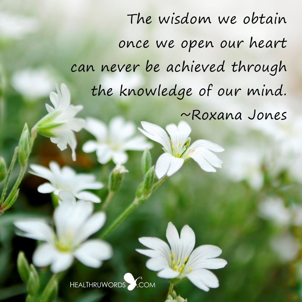 Inspirational Image: Wisdom is found in the Heart
