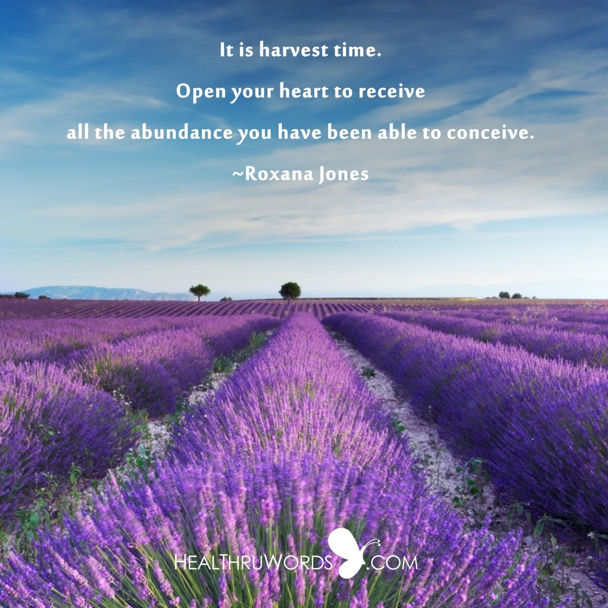 Inspirational Image: Your Harvest