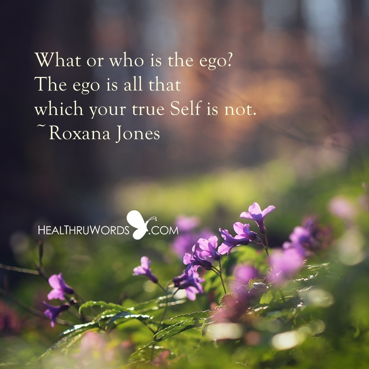 Inspirational Image: Between Ego and Self