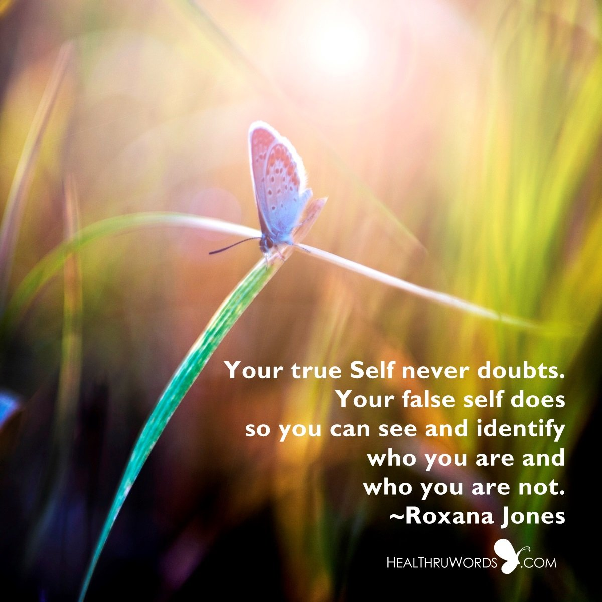 Inspirational Image: Your Two Selves