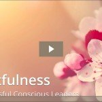Heartfulness for Successful Conscious Leader Keynote at Conscious Capitalism DC Chapter - May 2016