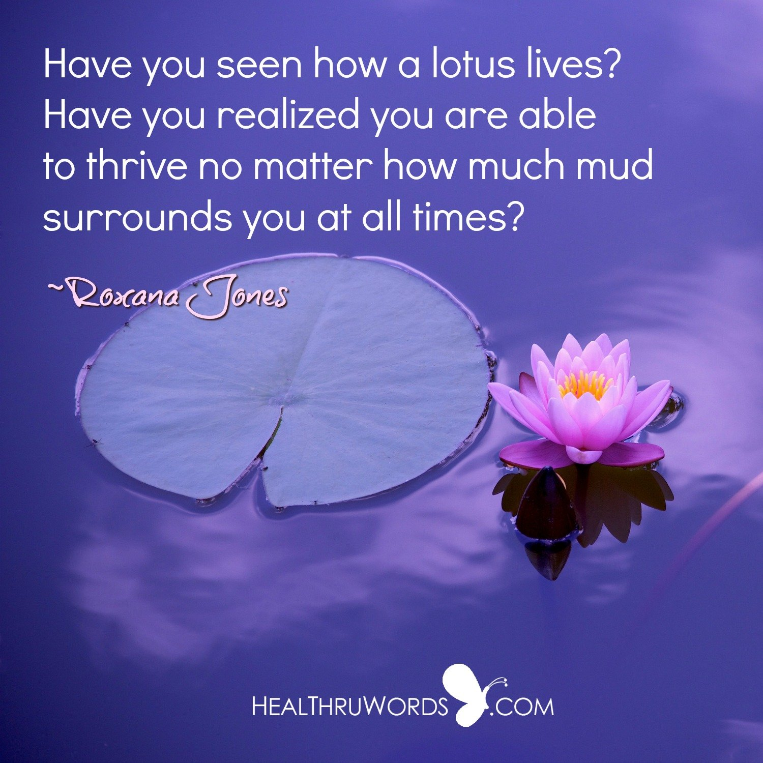 Inspirational Image: Like a Lotus