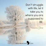 Healthruwords.com_-_Inspirational_Images_-_Flow-instead-of-Struggle