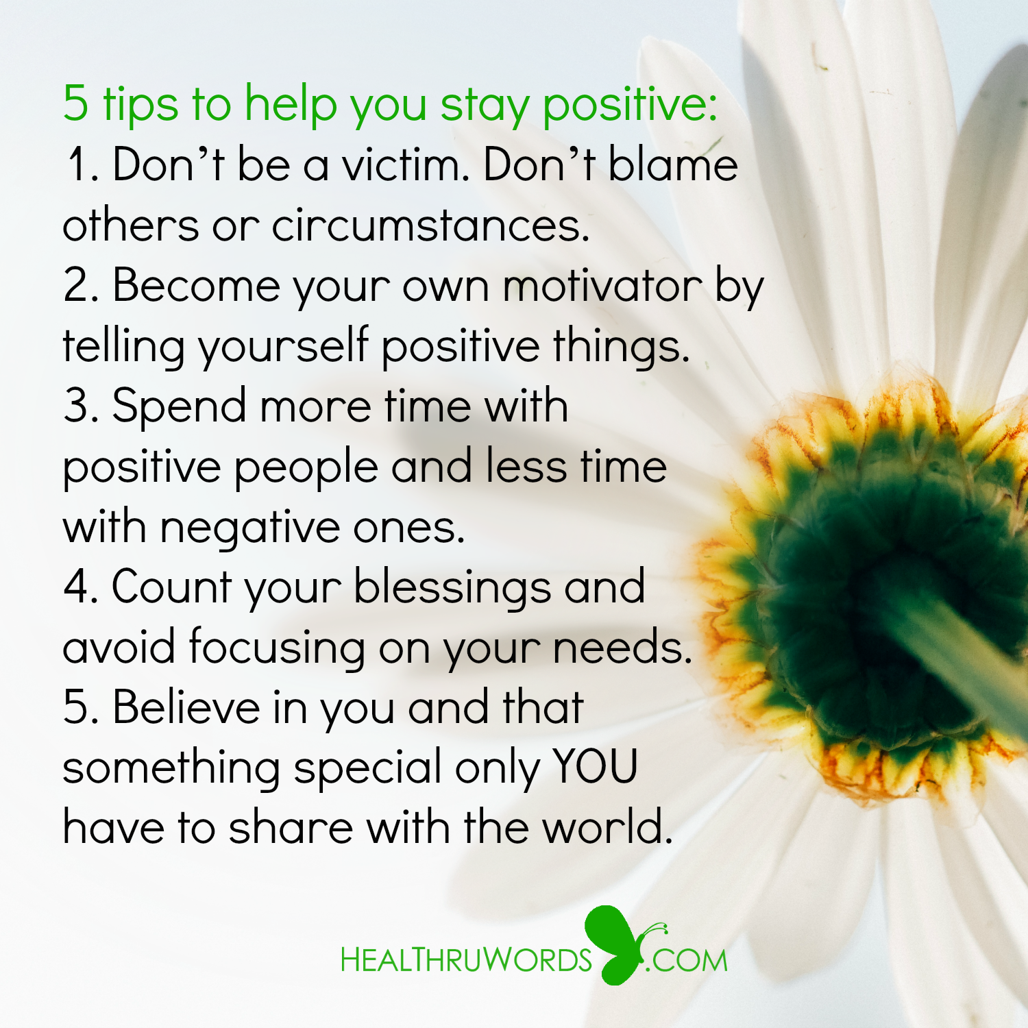 Inspirational Image: The Power of Staying Positive