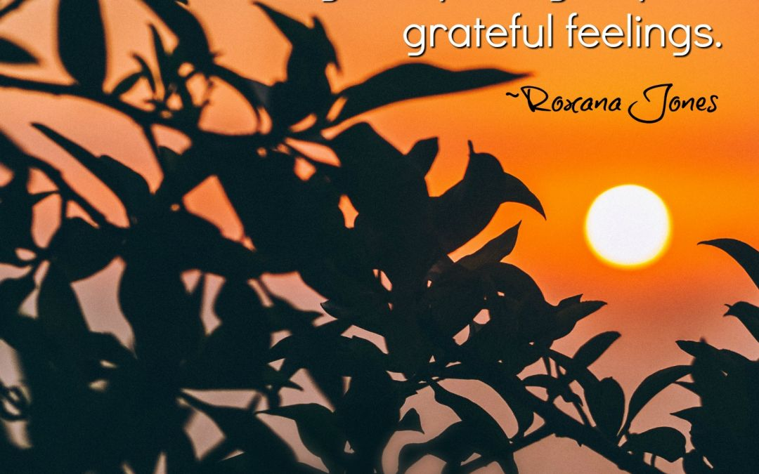 Gratitude Instead of Judgment