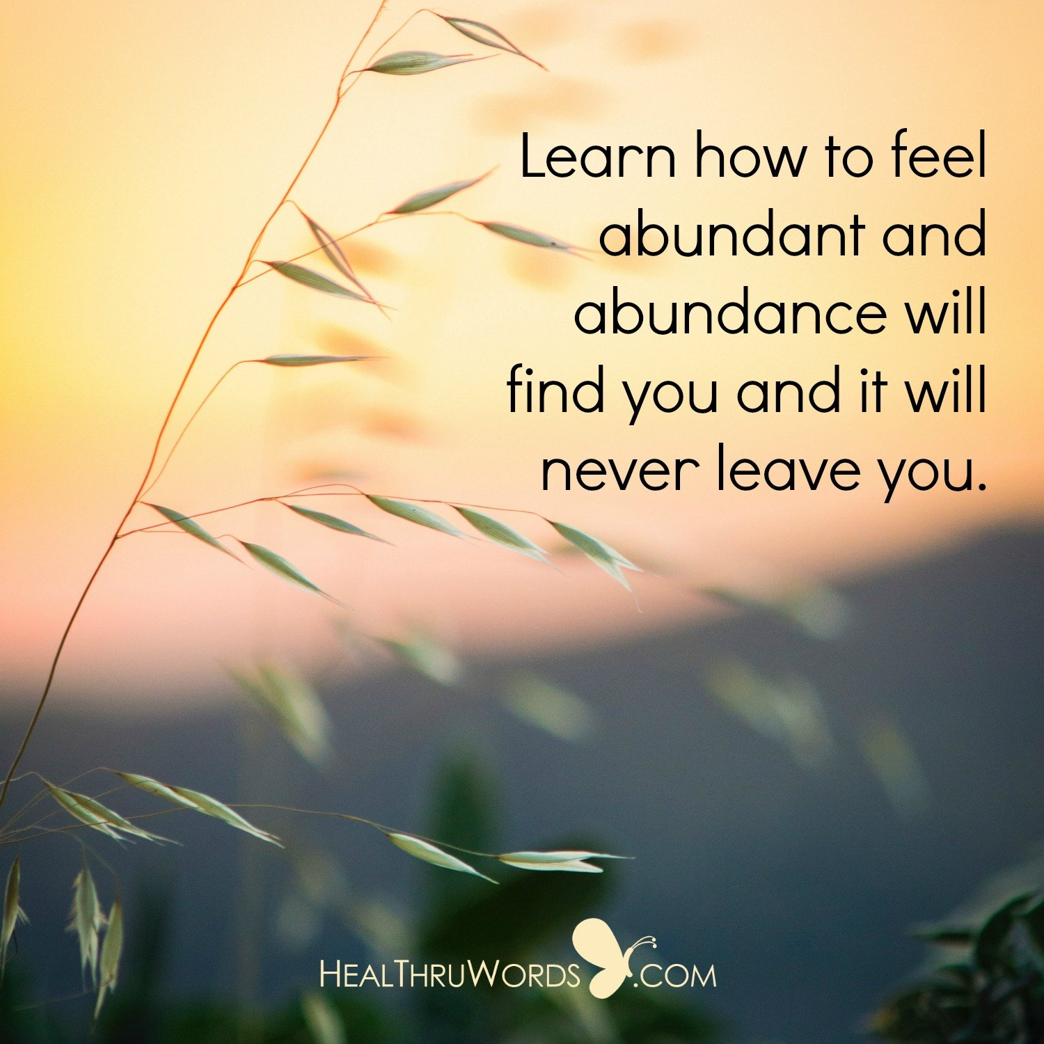 Inspirational Image: The Feeling of Abundance